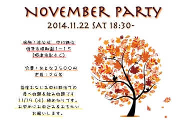 Party Poster Nov 2014 6.41.40 PM